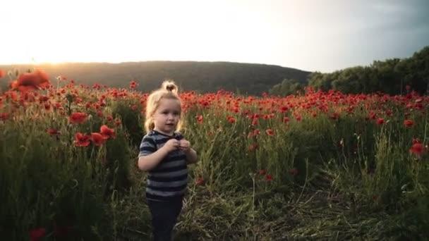 Šťastné dítě hraje s květinami v makovém poli při západu slunce, procházka na čerstvém vzduchu, letní dovolená v obci. Směje se radostné dítě úsměv usměvavý chlapec. Malý chlapec hraje v poli.
