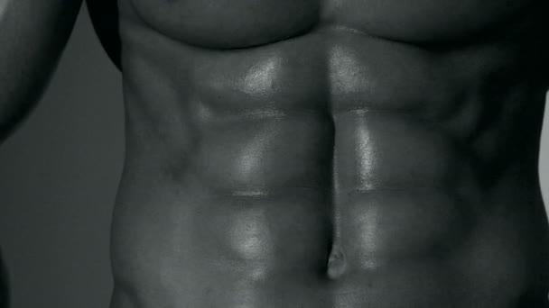 Sportovec, svaly, muž sportovec, triceps. Sportovní Kavkazský, šest pack, prsní svaly, triceps. Krásné mužské torzo, ab. steroidu, sport, vitamín, doping, anabolické, bílkovin. Kulturisty, kulturistika