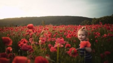 Happy child plays with flowers in poppy field at sunset, walk in fresh air, summer vacation in village. Joyful kid smile, smiling boy laughs. Little boy playing in the field.