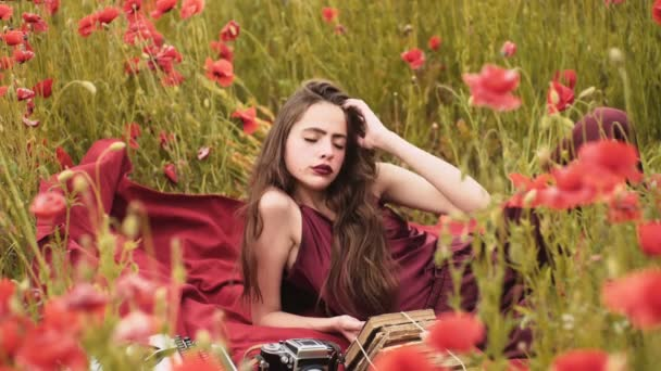 sensual girl poppy field young girl field girl having fun stock