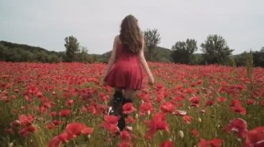 Sensual girl in poppy field. Young girl in the field. Girl laying in the field. woman in red. Girl in red dress in the middle of red color poppy field. Red poppy field. Blooming poppy field.