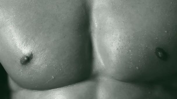 athletischer kaukasischer Bodybuilder. schöner Mann Körper. Muskelmann-Oberkörper. fitte Männer Körper. Fitnesslehrer. Bodybuilder. Wrestler. starker Mann.