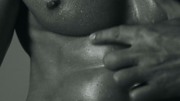Sportler, Muskeln, Sportler, Trizeps. athletischer Kaukasier, Sixpack, Brustmuskeln, Trizeps. schöner männlicher Oberkörper, ab. Steroid, Sportvitamin, Doping, Anabolika, Protein. Bodybuilder, Bodybuilding.