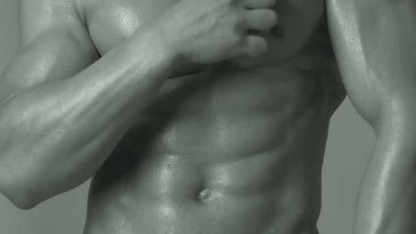 Sportovec, svaly, muž sportovec, triceps. Sportovní Kavkazský, šest pack, prsní svaly, triceps. Krásné mužské torzo, ab. steroidu, sport, vitamín, doping, anabolické, bílkovin. Kulturisty, kulturistika.