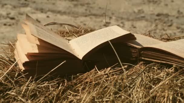 Otevřená kniha s Překlopená stran. Vítr fouká stránky knihy.