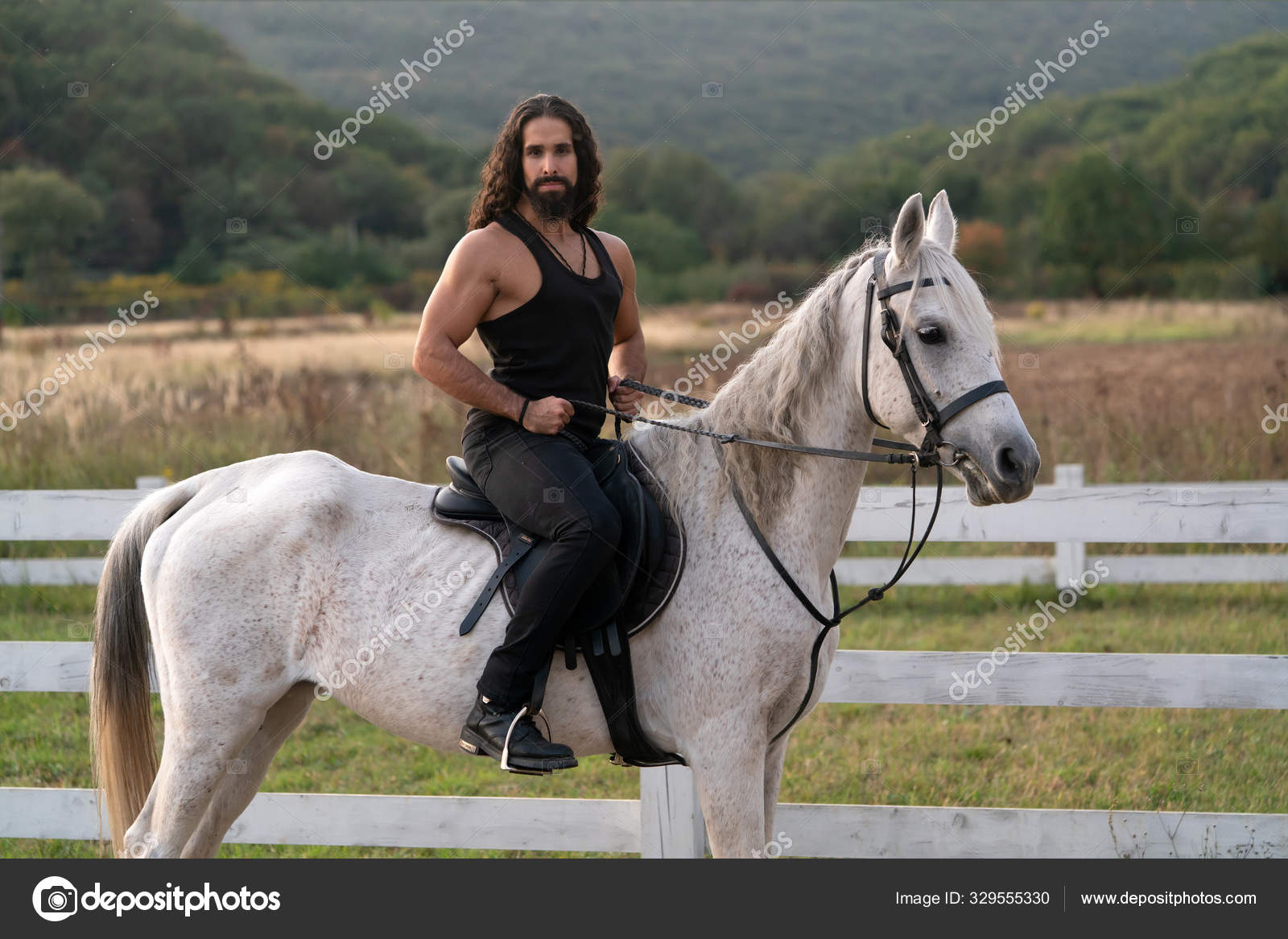 Beautiful Horse With Man Rider Trotting On Autumnal Field Equestrian And Animal Love Concept Rider On