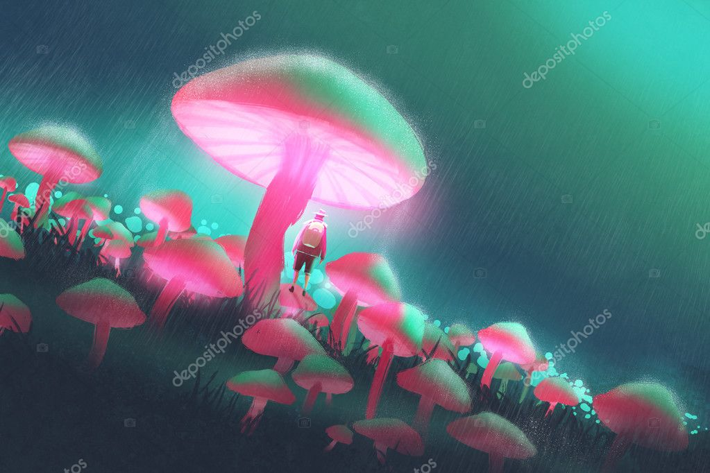 hiker man in the big mushrooms forest at rainy night