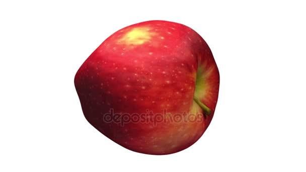 3D činí z rotující Red Delicious apple na bílém pozadí. Video je bezproblémově opakování.