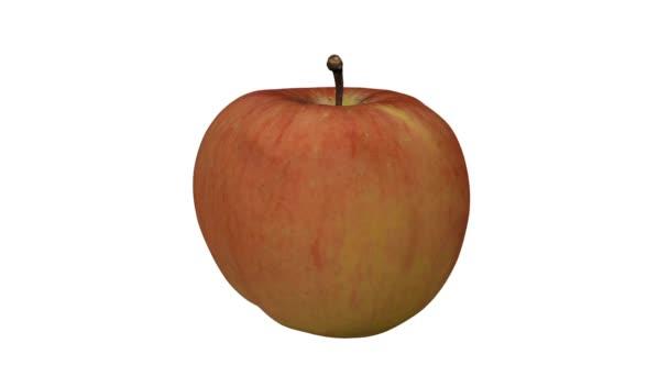 3D činí z rotující Fuji jablko na bílém pozadí. Video je bezproblémově opakování.