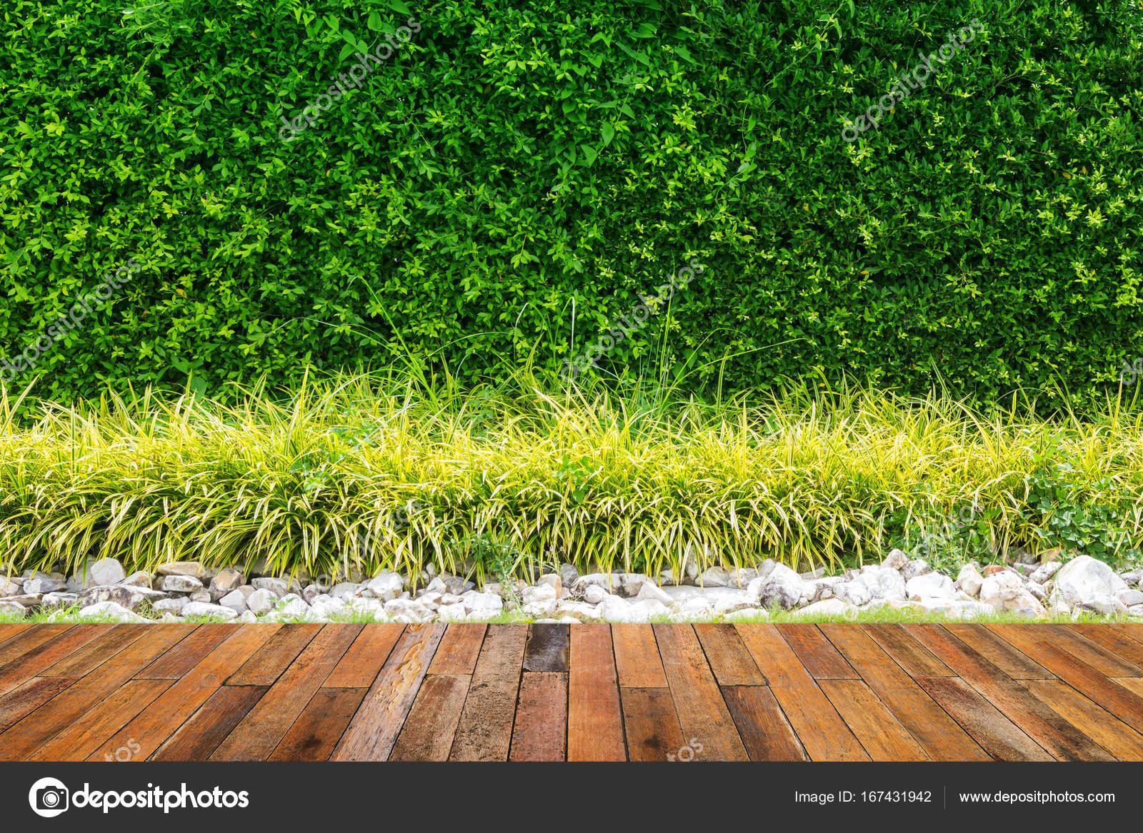 Mur De Feuilles Vertes Avec Le Vieux Plancher De Bois Dans