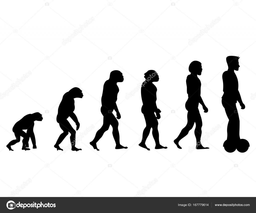 Evolution Illustrations & Vectors