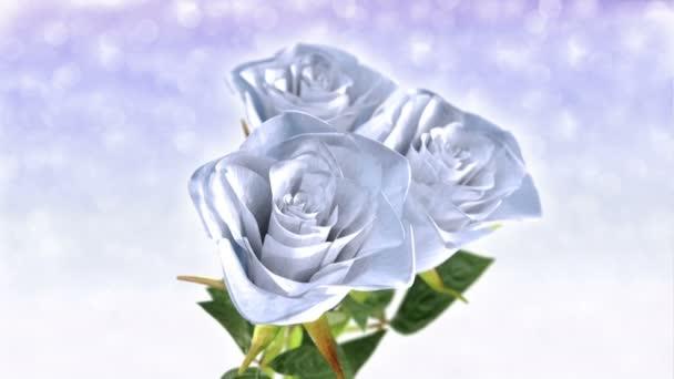 rotující bílá růže, svatební motiv - 3d vykreslení. Bezešvá smyčka