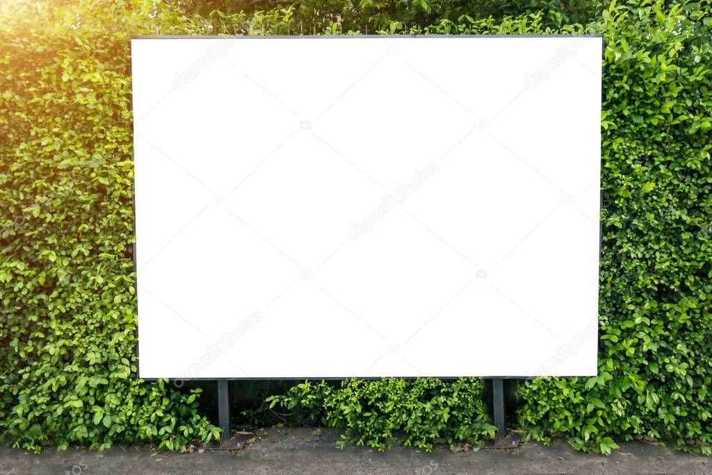 Cartelera en primavera verano verde hojas de blanco — Foto de stock ...