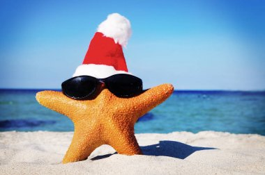 Wonderful Christmas on Beach StarFish