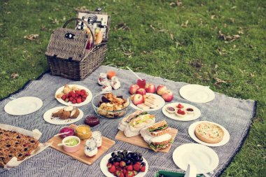 Tasty Meal Outdoors on Picnic