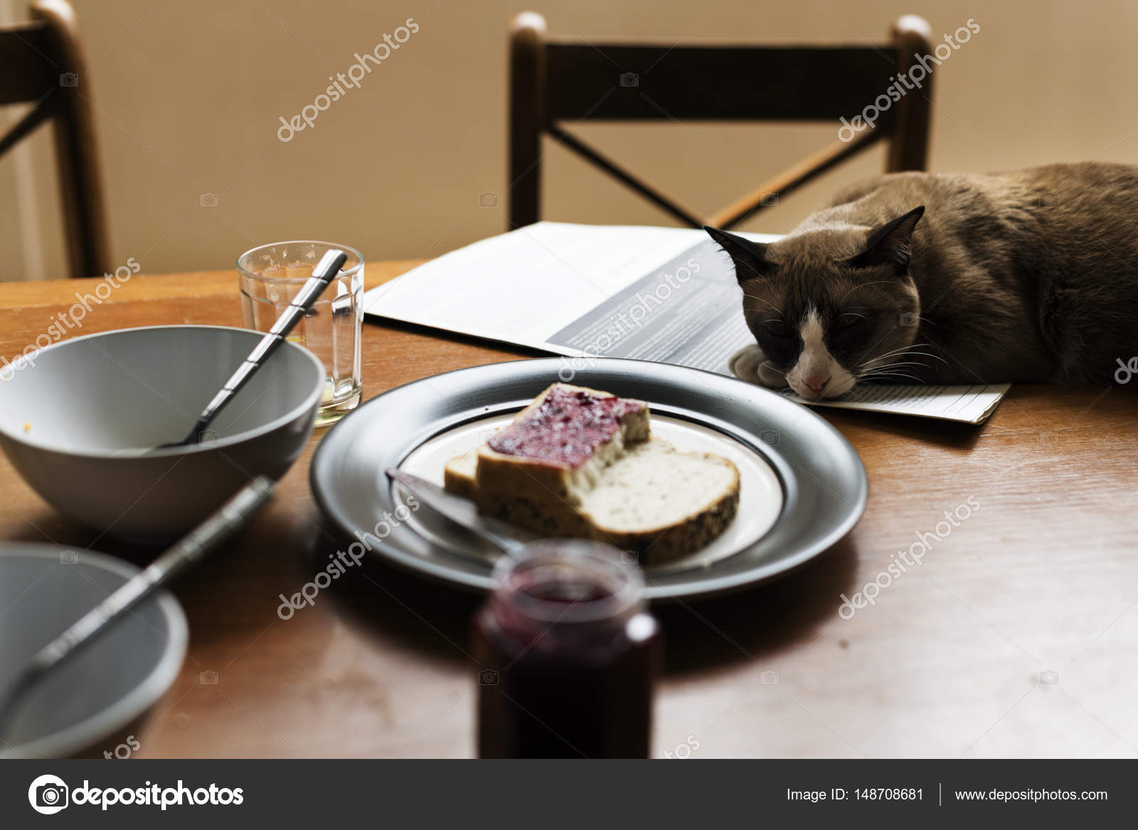 Cat Sitting On Table With Business Newspaper Concept Original Photoset Photo By Rawpixel