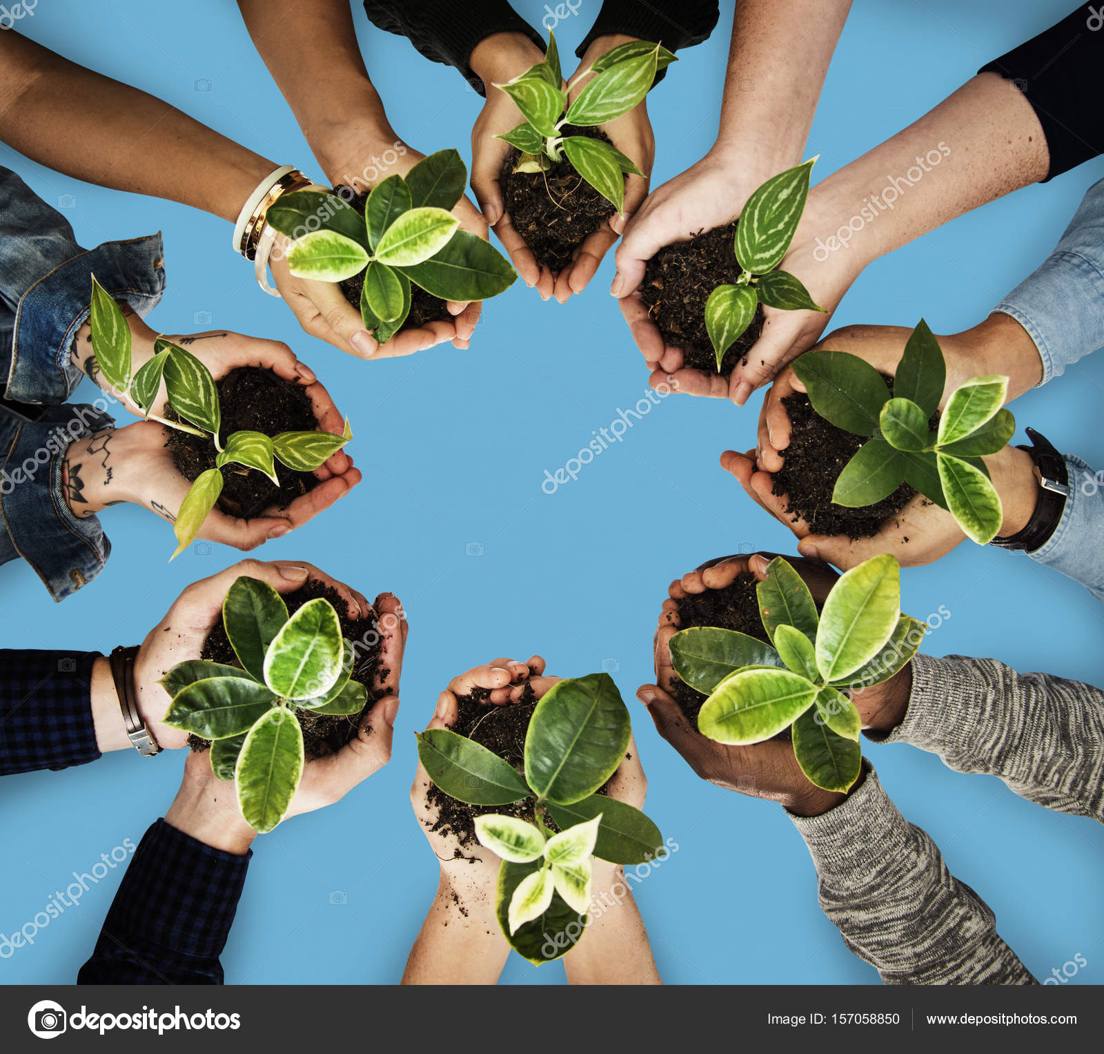 Group of hands holding green plants — Stock Photo © Rawpixel