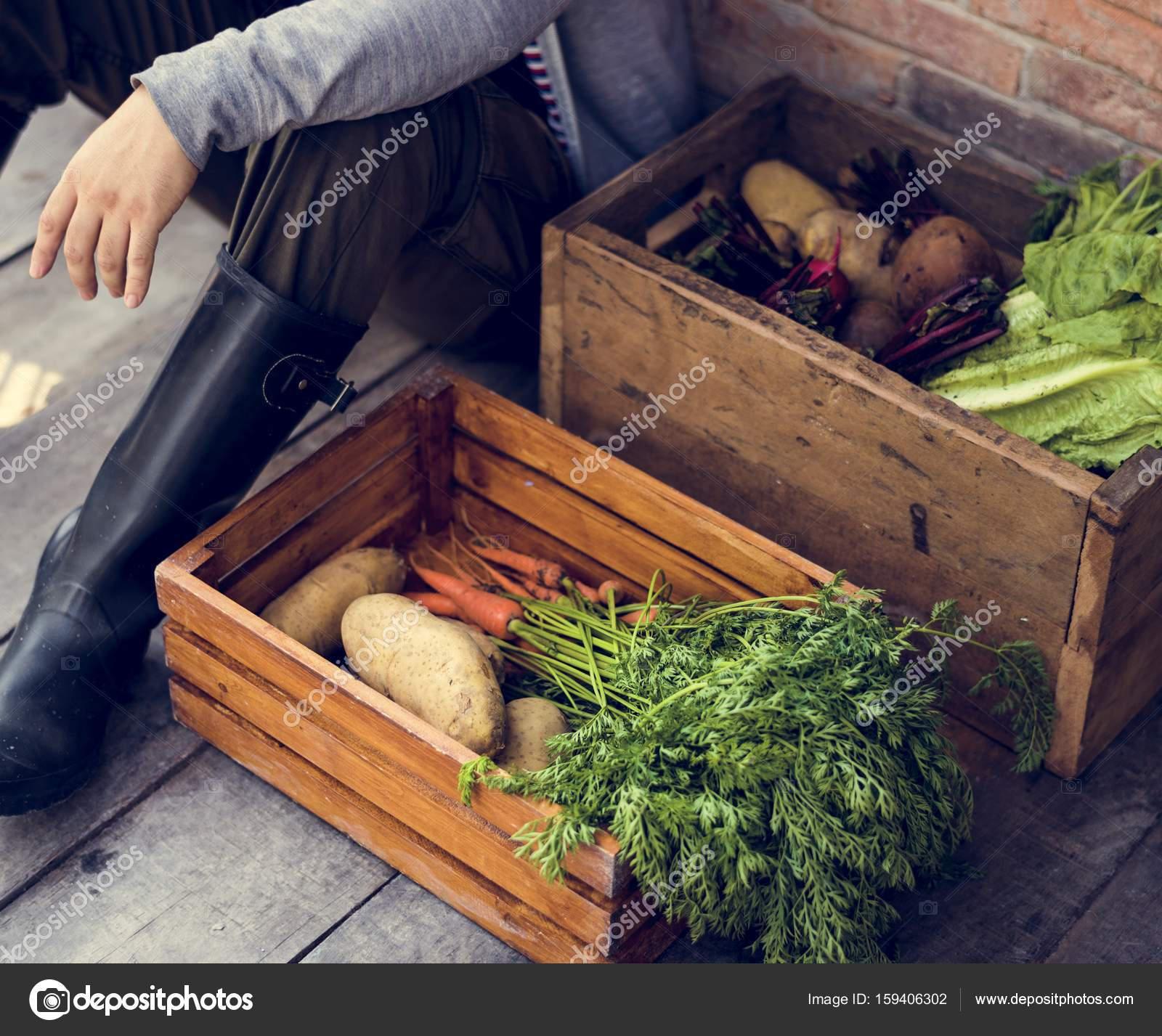 Gardener with organic agricultural products — Stock Photo © Rawpixel