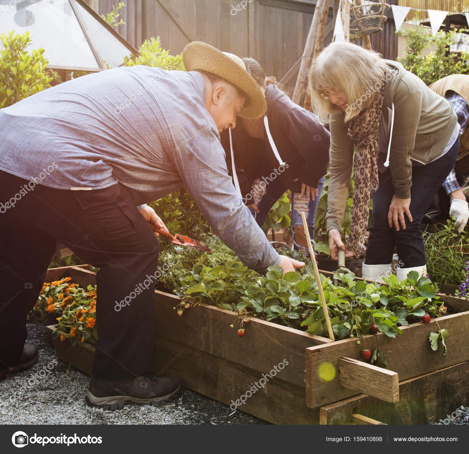 people gardening on backyard together — Stock Photo © Rawpixel ...