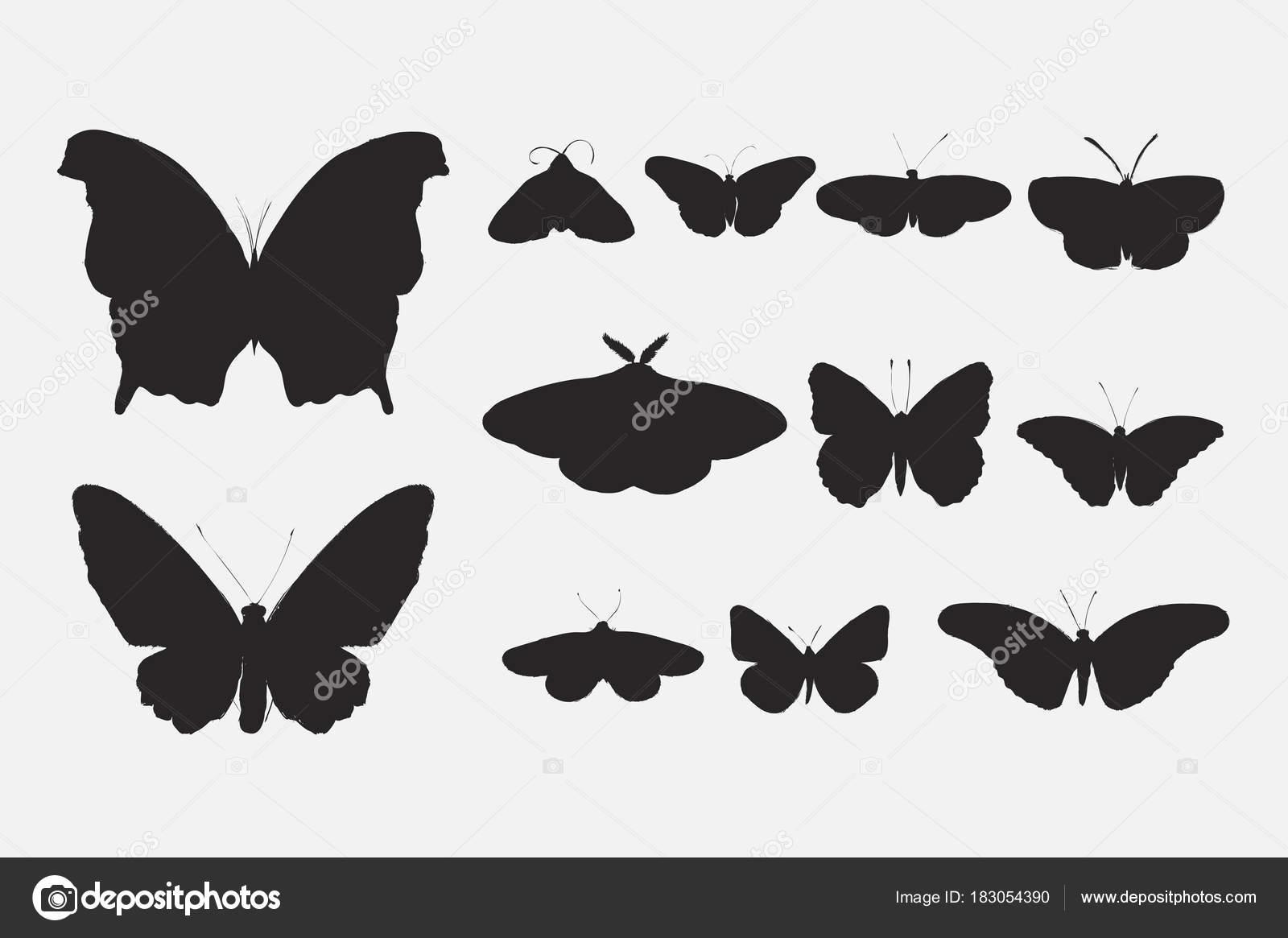 Ilustrace Kresba Styl Sbirku Motylu Stock Fotografie C Rawpixel