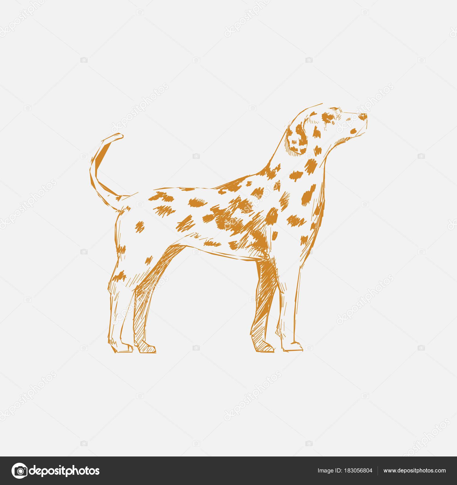 犬のイラストの描き方 ストック写真 Rawpixel 183056804