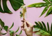 Fotografie Hausgemachte Sommer Wildblumen ice pop
