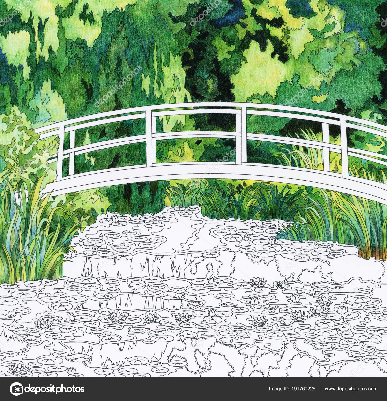 Kleurplaten Waterlelies.Monet Waterlelie Volwassen Kleurplaat Stockfoto C Rawpixel 191760226
