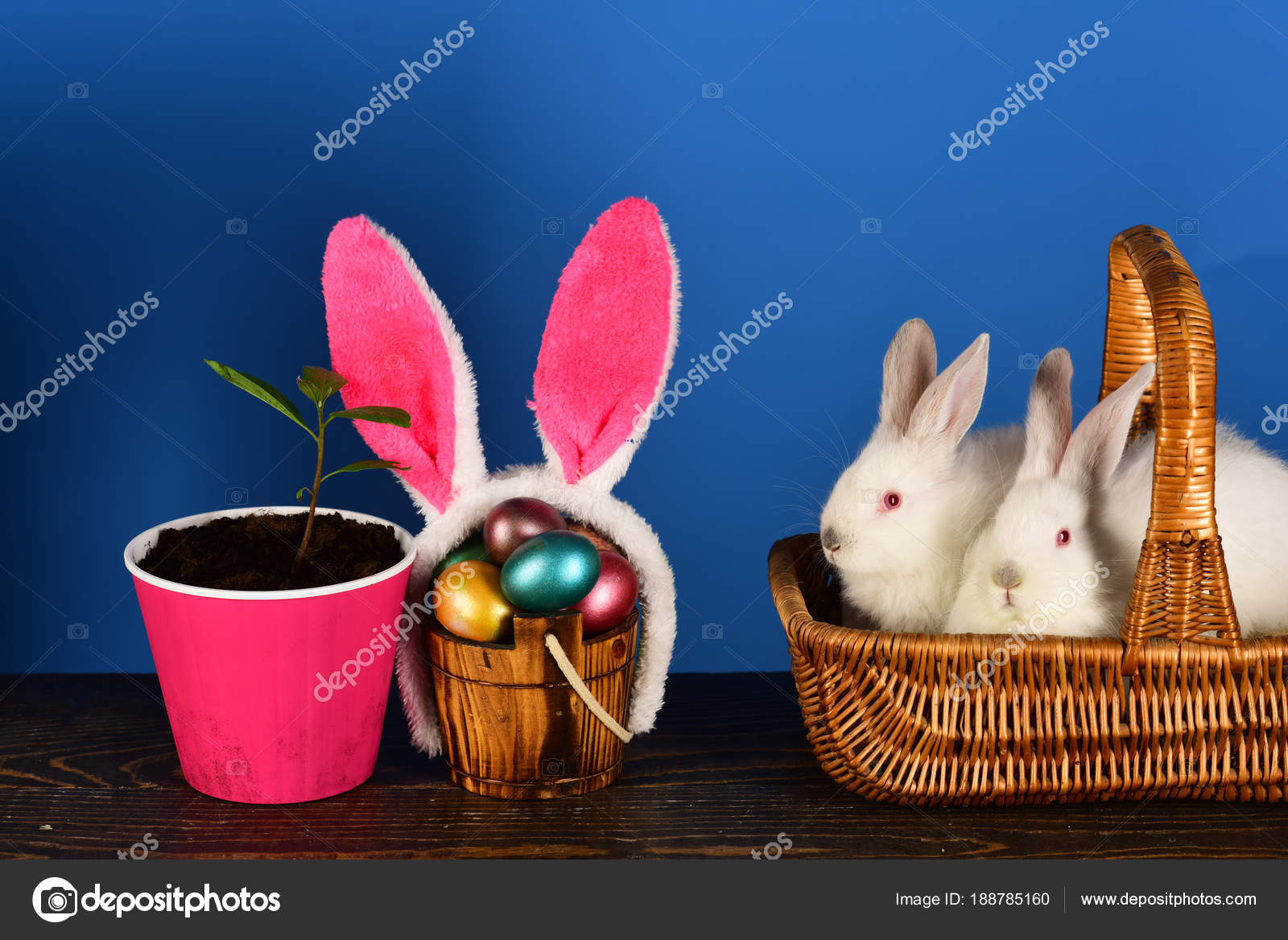Easter Eggs Family Cute Bunny With Funny Bunny Ears Easter Egg