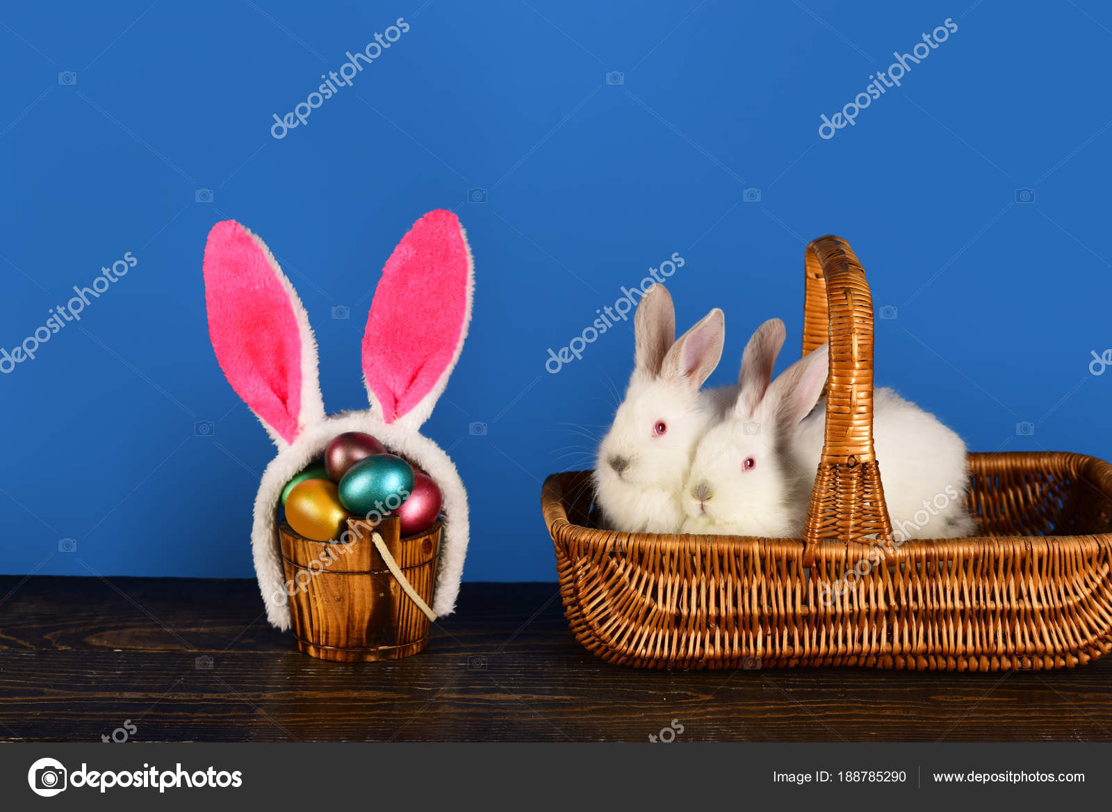 White cute rabbits in the basket cute bunny rabbits with funny white cute rabbits in the basket cute bunny rabbits with funny rabbit ears best happy easter ideas for happy family photo by hannatv negle Gallery