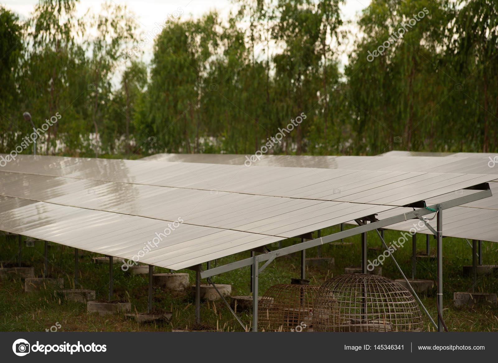 Pannelli solari celle solari in fattoria solare con