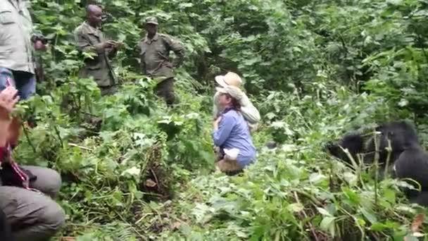 Tracking mountain gorillas, Bwindi Impenetrable National Park, Uganda