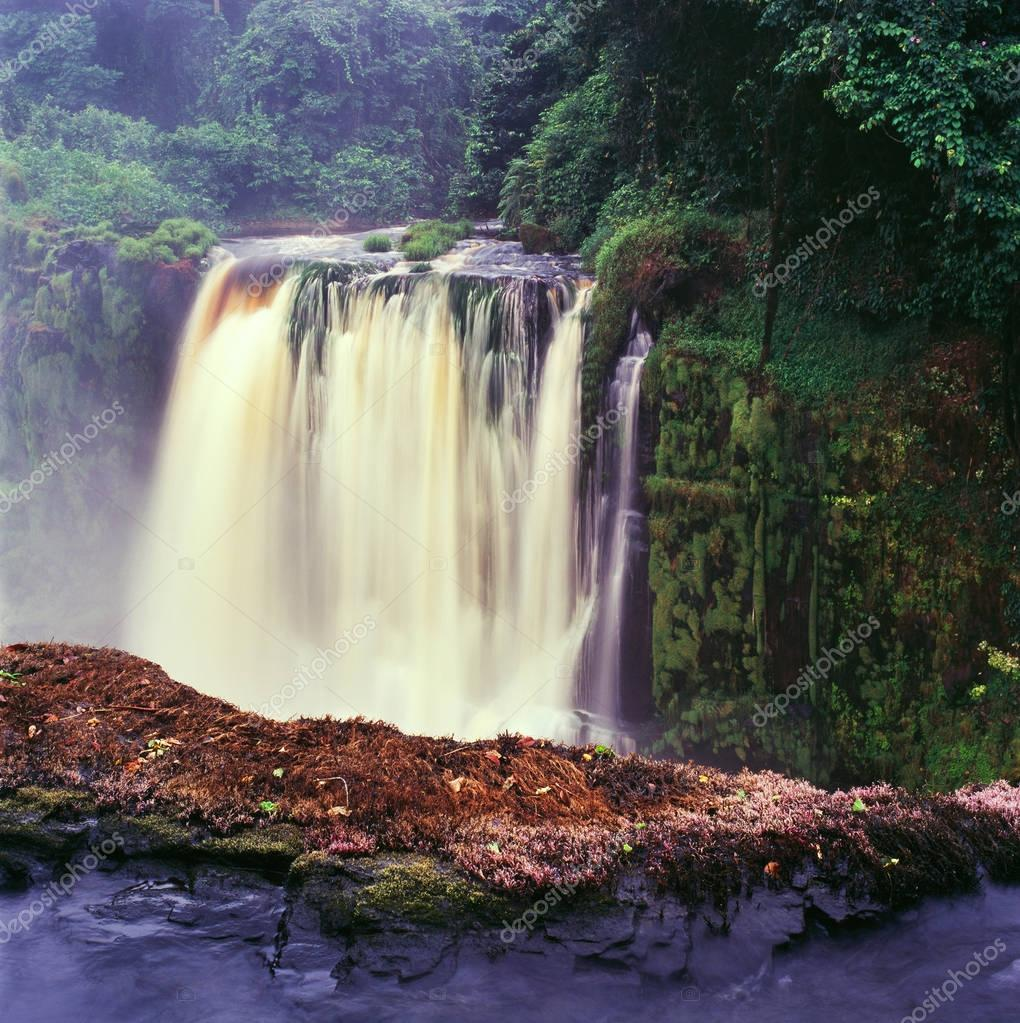 waterfall in tropical jungles