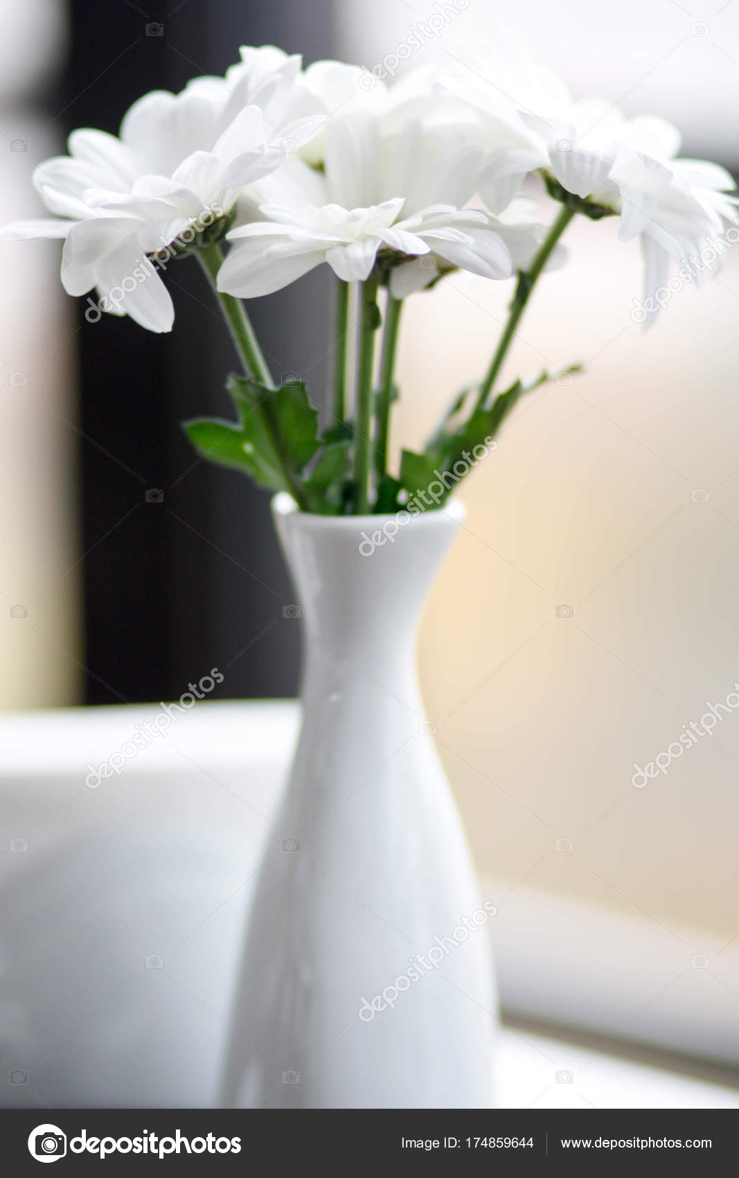 Beautiful simple white porcelain vase with delicate white flower beautiful simple white porcelain vase with delicate white flower stock photo mightylinksfo
