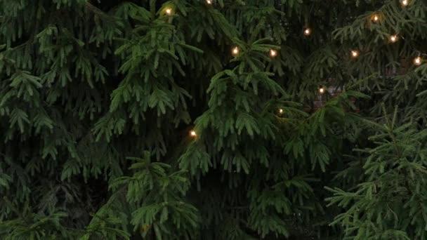 Karácsonyfa füzér és fények