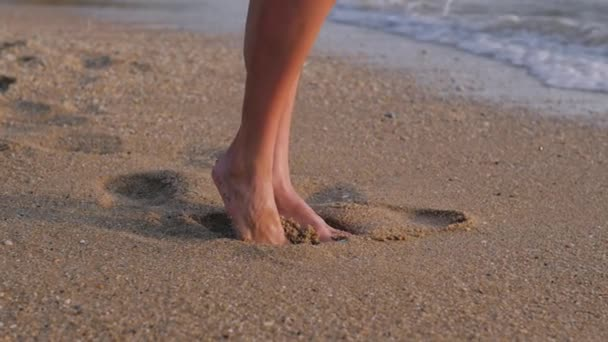 zblízka žena nohy chůze bosá na pláži při západu slunce zanechání stopy v písku žena turista na letní dovolenou.