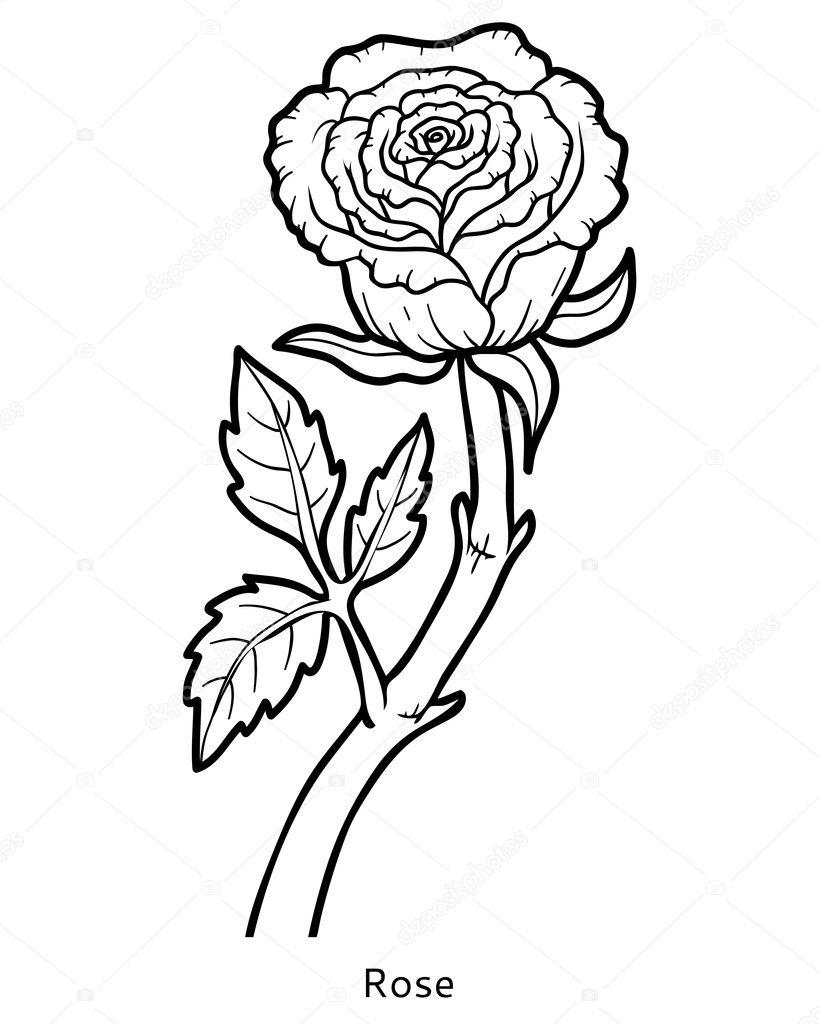 Libro para colorear, flor rosa — Archivo Imágenes Vectoriales ...