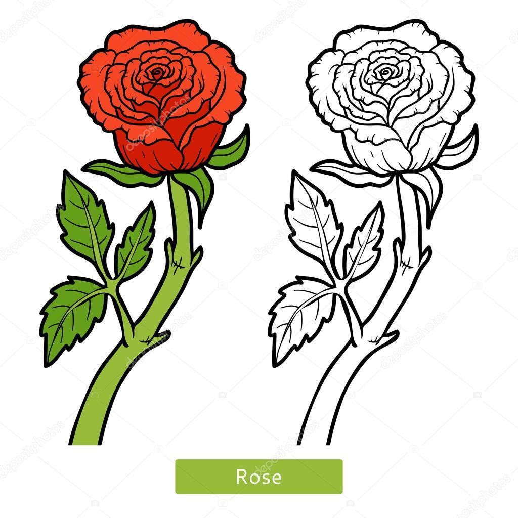 Boyama Kitabı çiçek Gül Stok Vektör Ksenyasavva 128784058