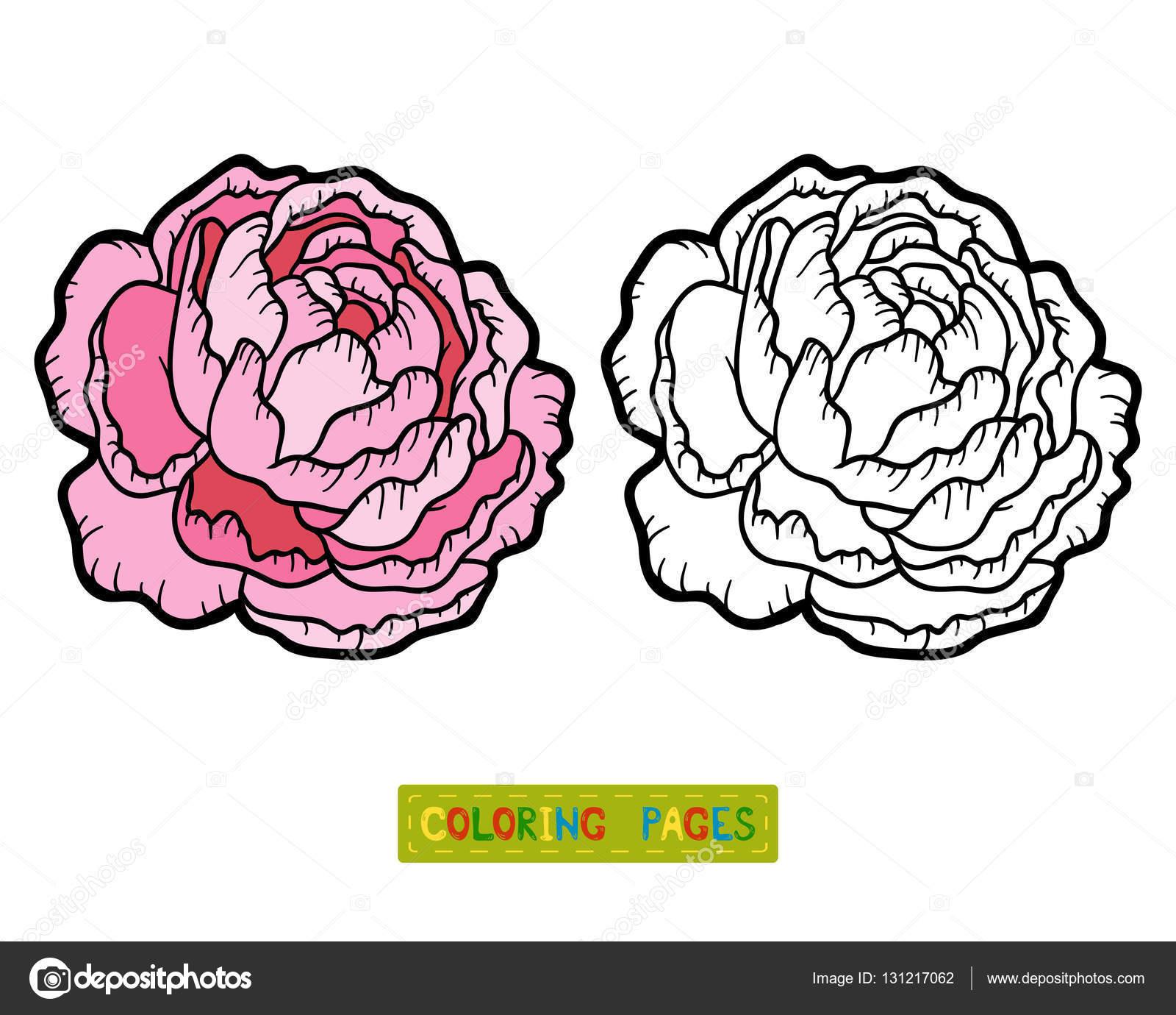 Libro para colorear, flor de peonía — Archivo Imágenes Vectoriales ...