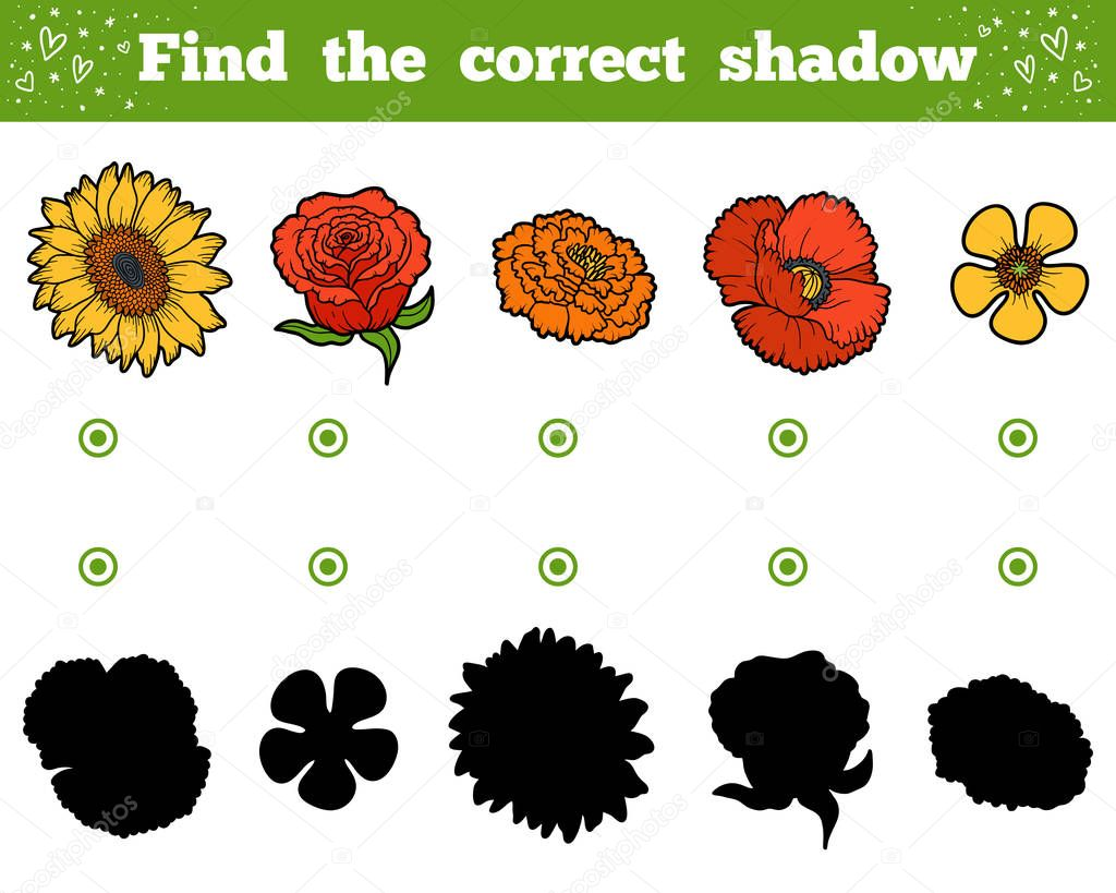 Find the correct shadow. Set of flowers