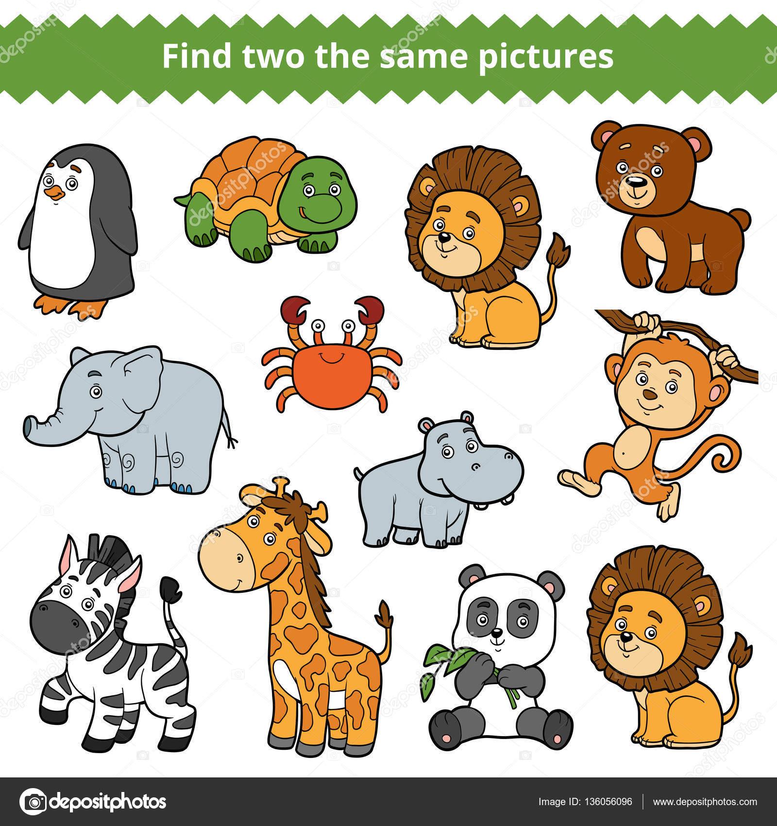 2 つの同じ画像を見つける、動物園の動物の集合をベクトル — ストック
