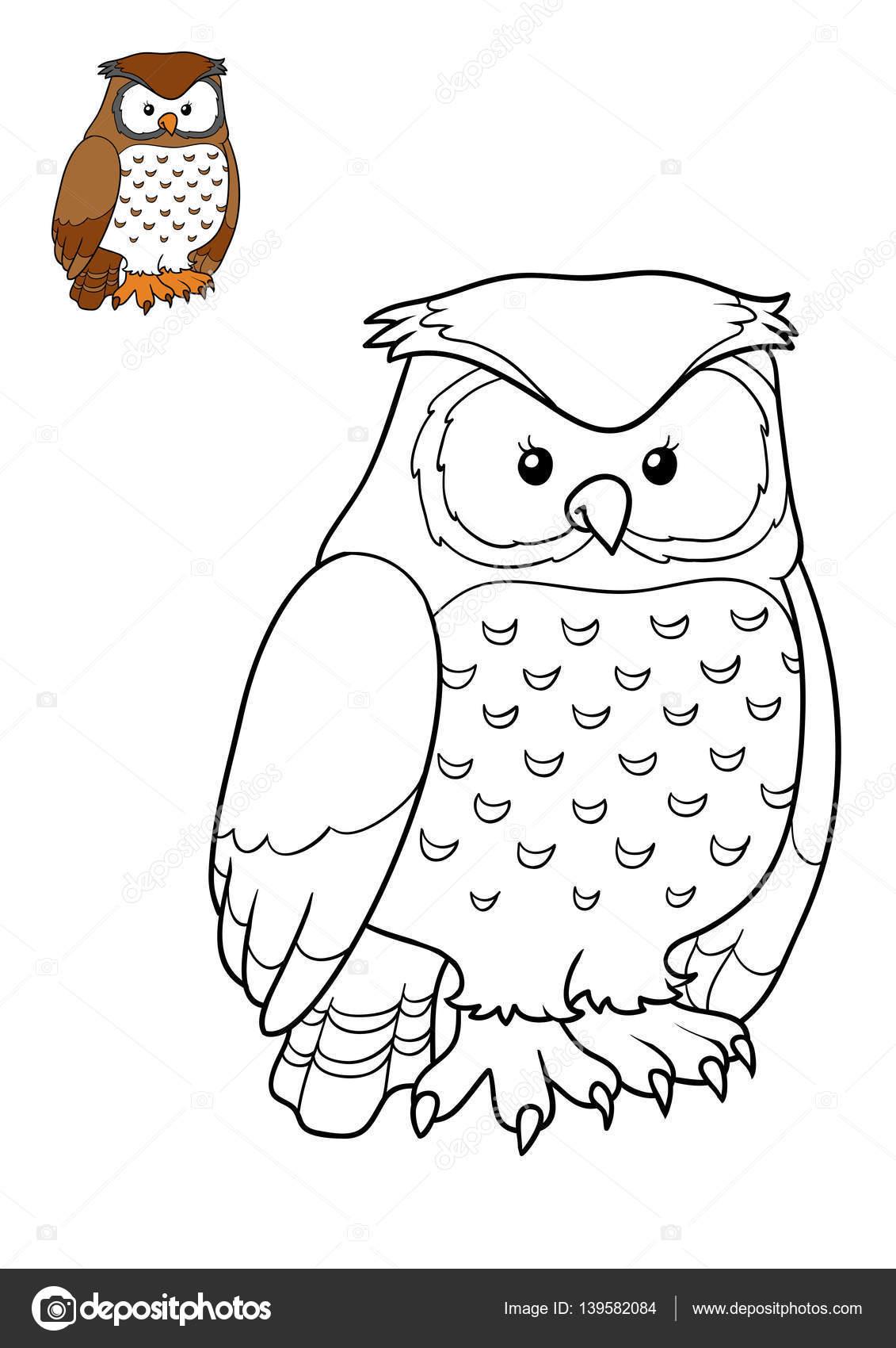 Boyama Kitabı Baykuş Stok Foto Ksenyasavva 139582084