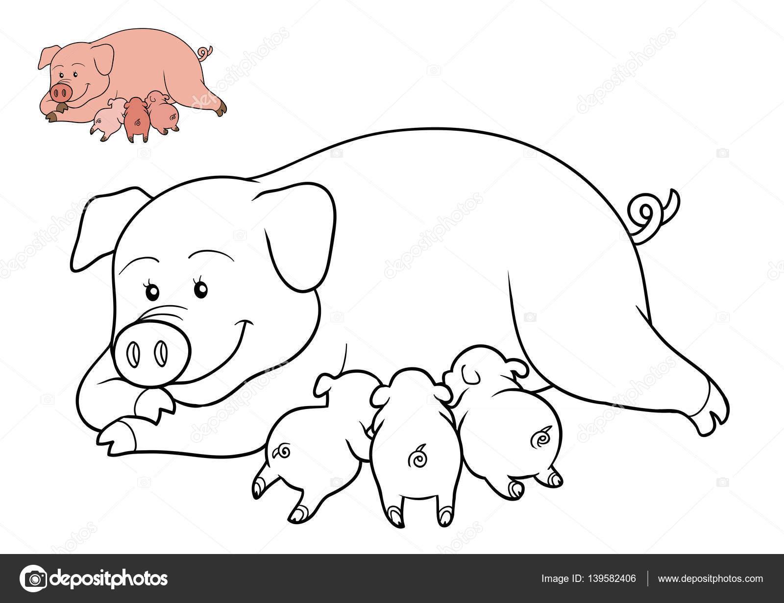 Coloring book, Pig — Stock Photo © ksenya_savva #139582406