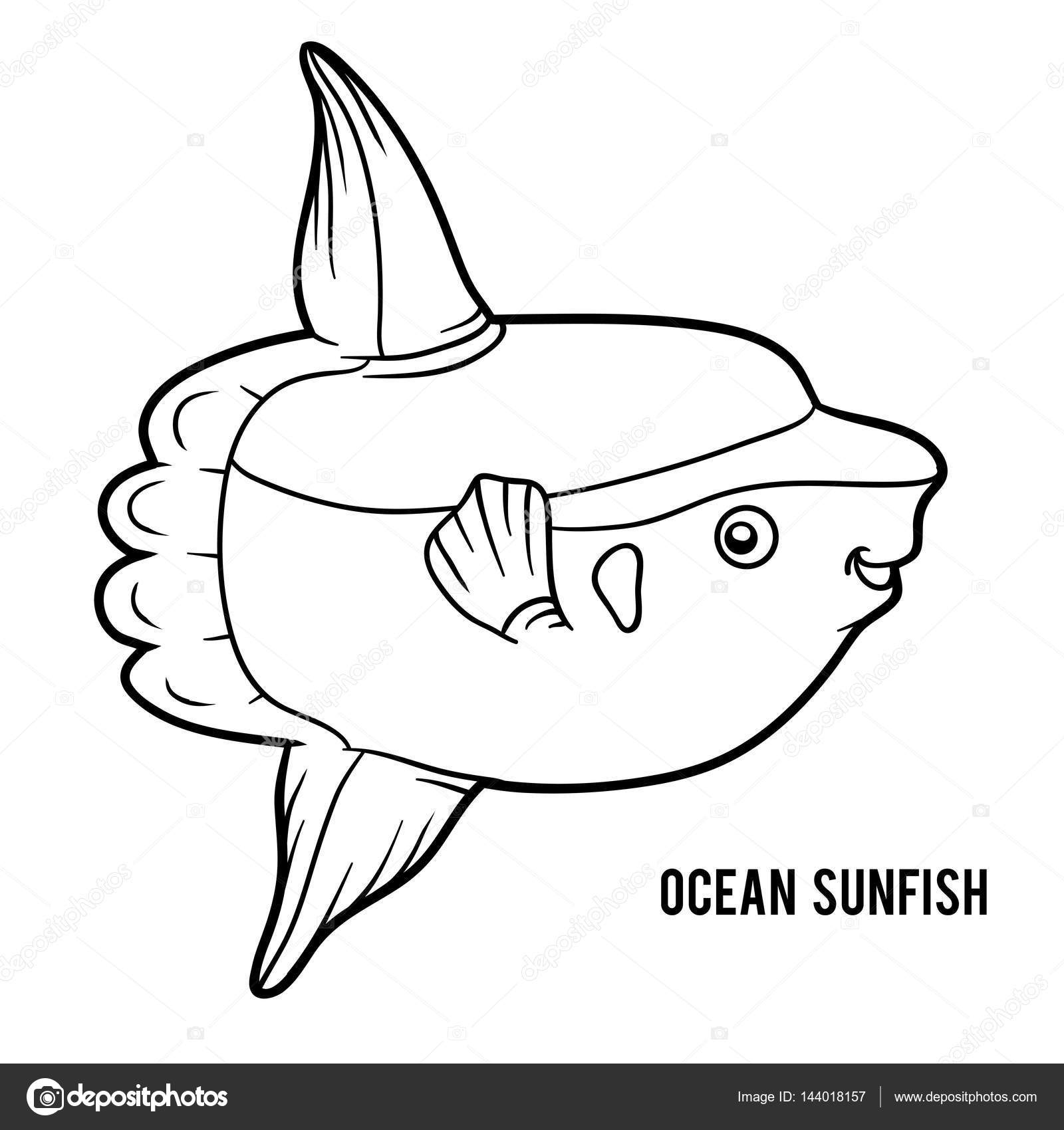 coloring book for children ocean sunfish vector by ksenya_savva