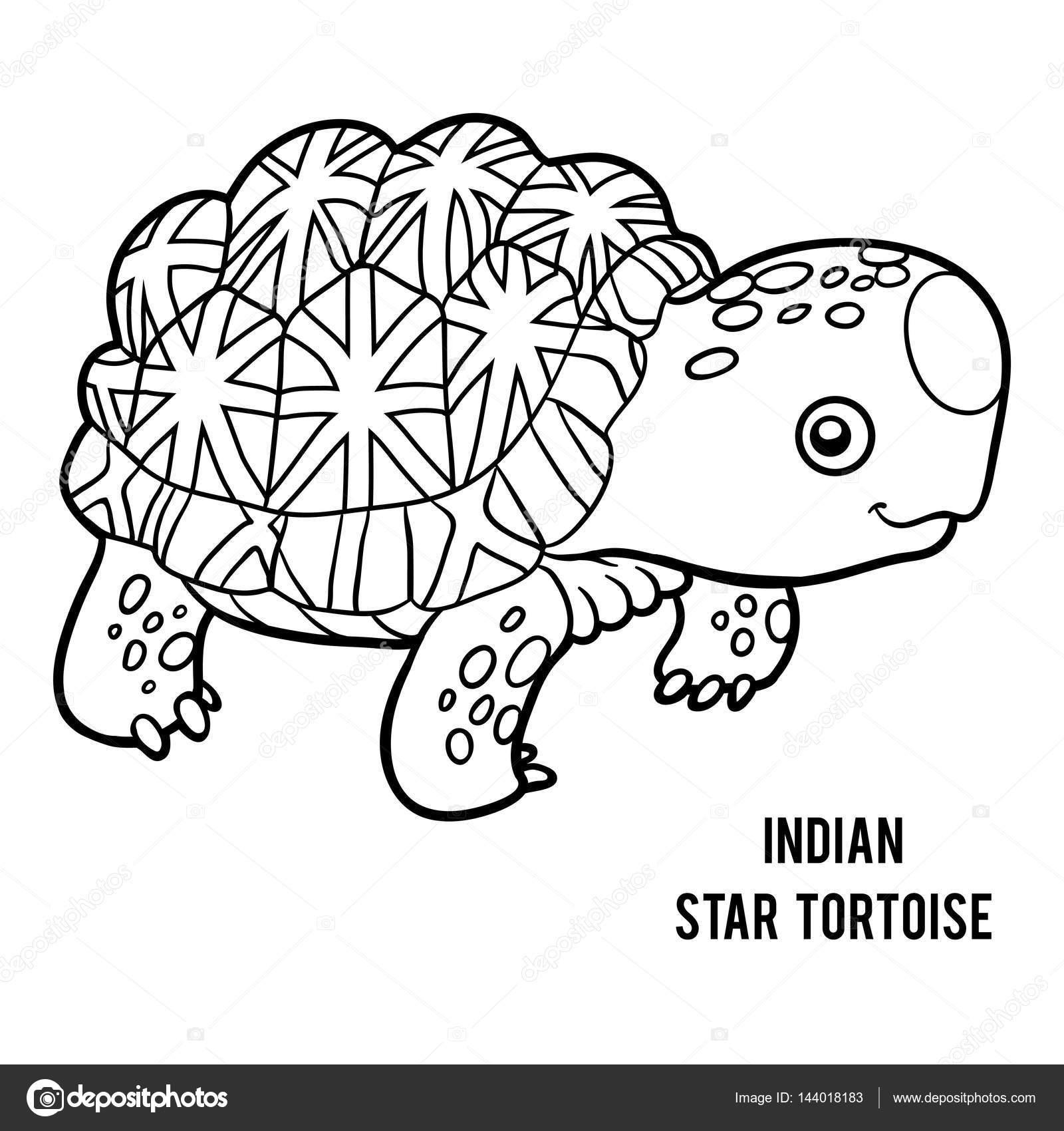 Malbuch, indische Sterne Schildkröte — Stockvektor © ksenya_savva ...
