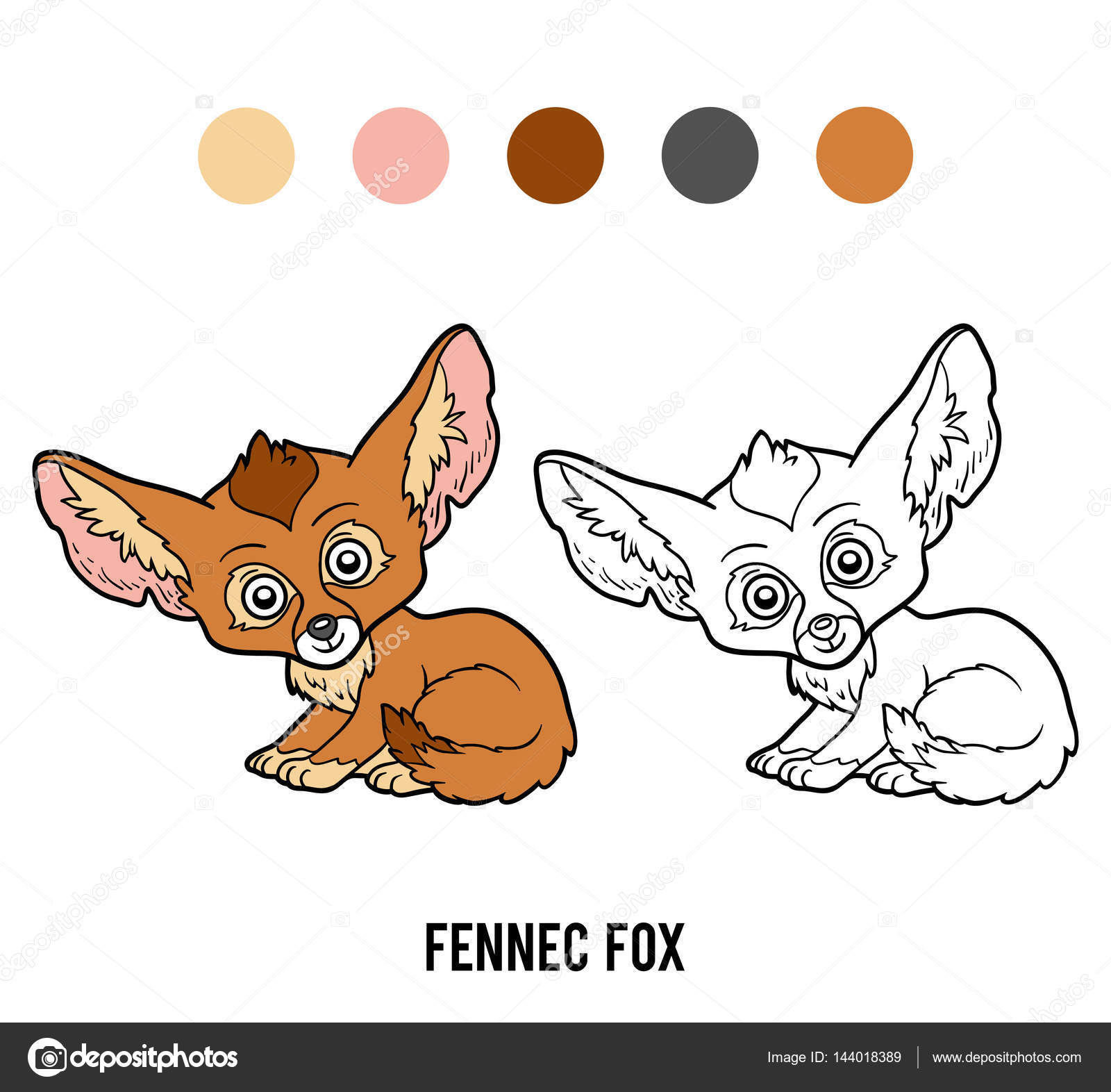 coloring book for children fennec fox vector by ksenya_savva - Fox Coloring Book