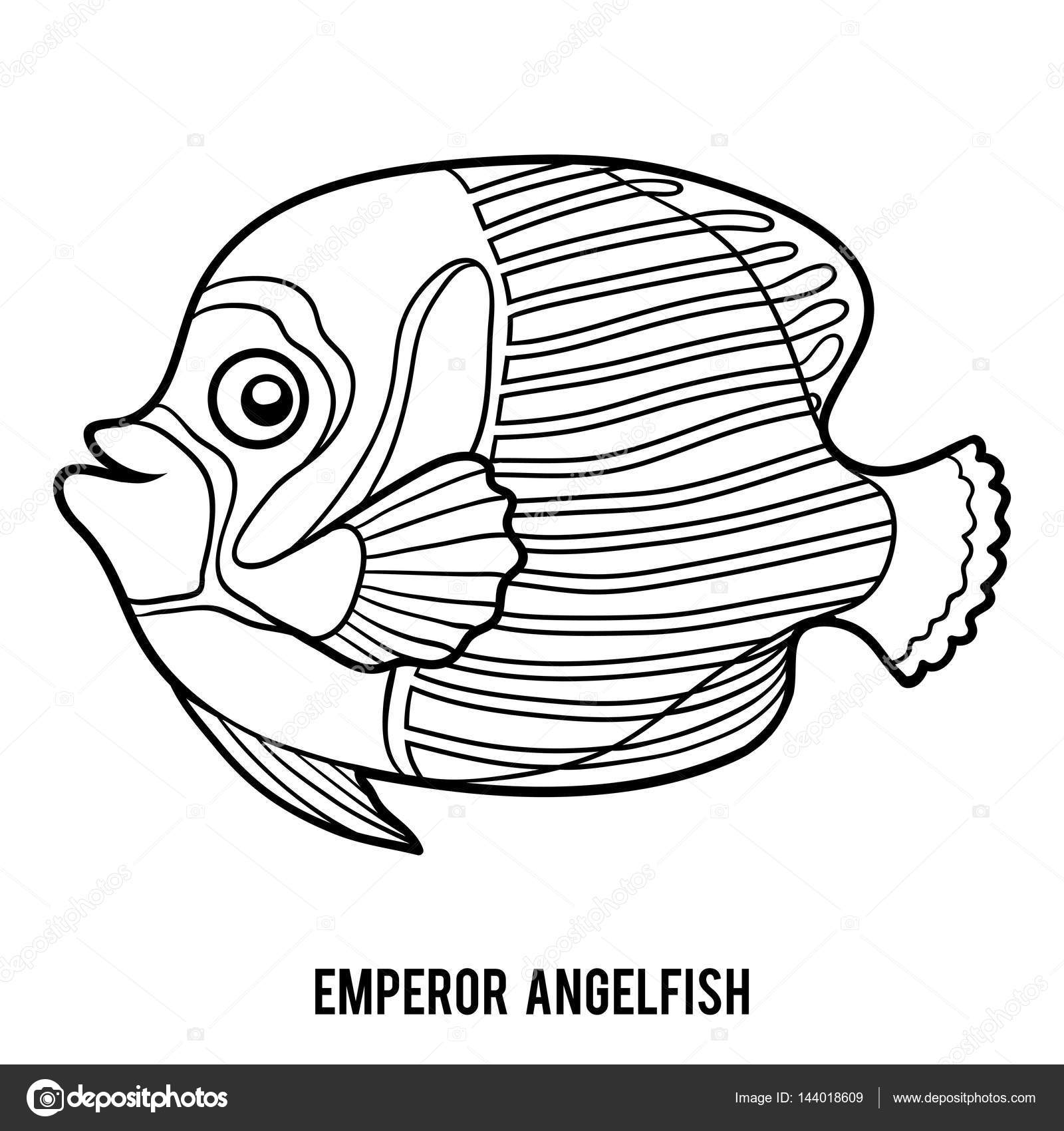 Libro de colorear, pez ángel emperador — Archivo Imágenes ...