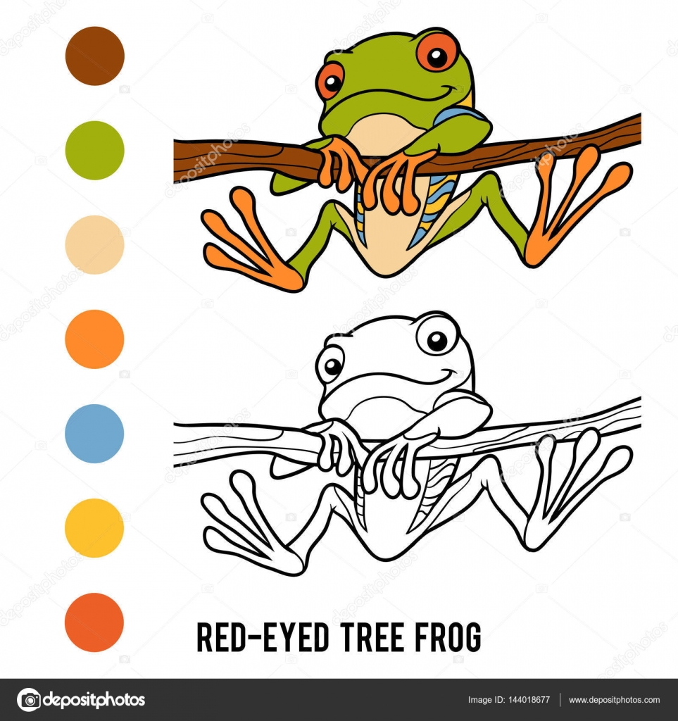 Imágenes Ojos De Rana Para Dibujar Libro De Colorear Rana De