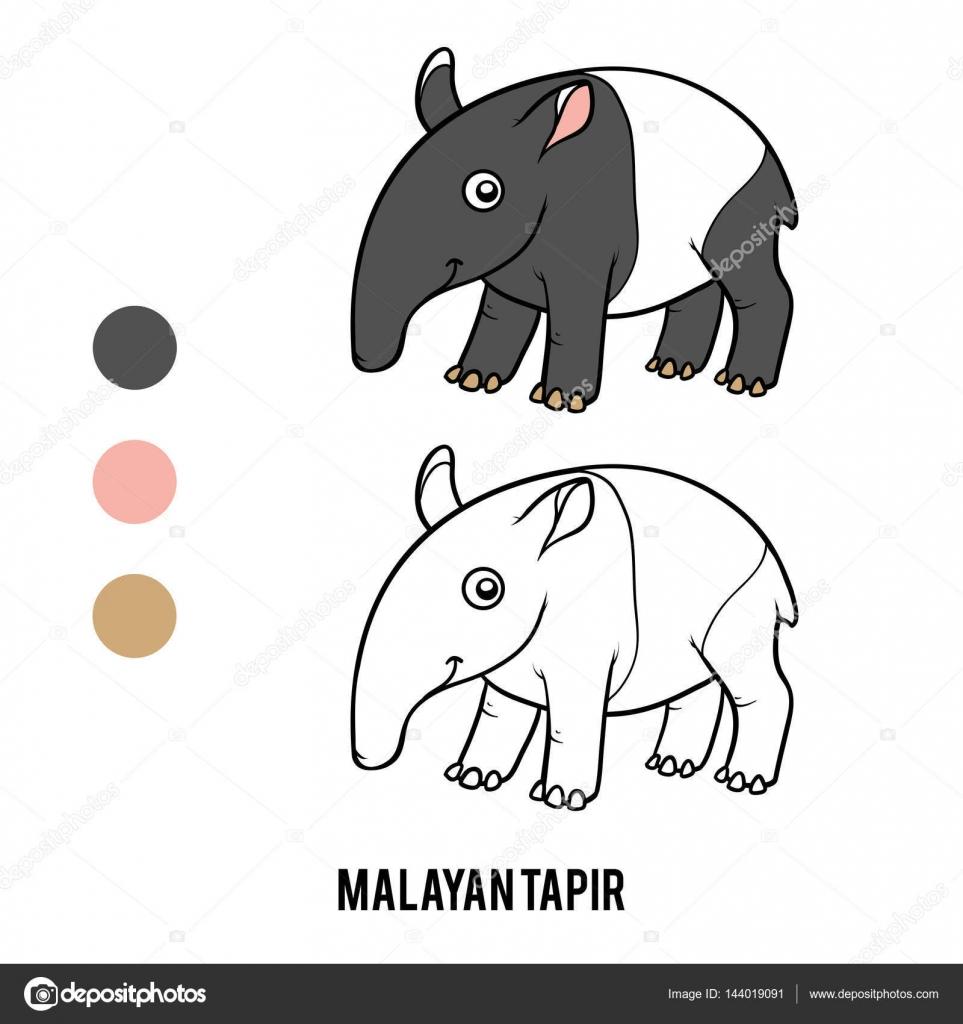 Coloring Book Malayan Tapir Stock Vector Ksenya Savva