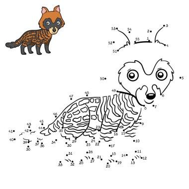 Numbers game, African civet