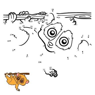 Numbers game, Pygmy slow loris